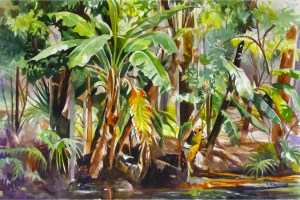 Susan Strawbridge Tropical Landscape