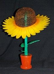 Richard Morris Sunflower.JPG
