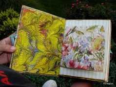 Full Tilt Boogie Book 12-P1110158