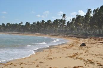 Republica Dominicana -Eco Caribe Tour-Plaja idilica