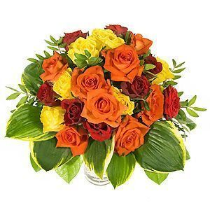 24-rosas-rojas-naranjas-y-amarillas