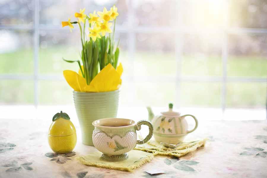 Narcisos, la planta que anuncia la llegada de la primavera