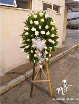 Fúnebre X19