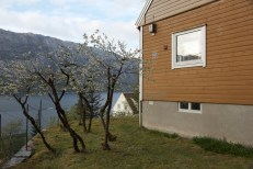 Flørli The fjord house Photo Abtffn