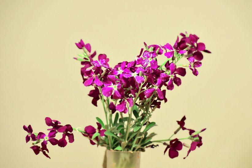 ramos de flores de alhelí para tu boda
