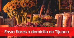 Envía flores a domicilio en Tijuana