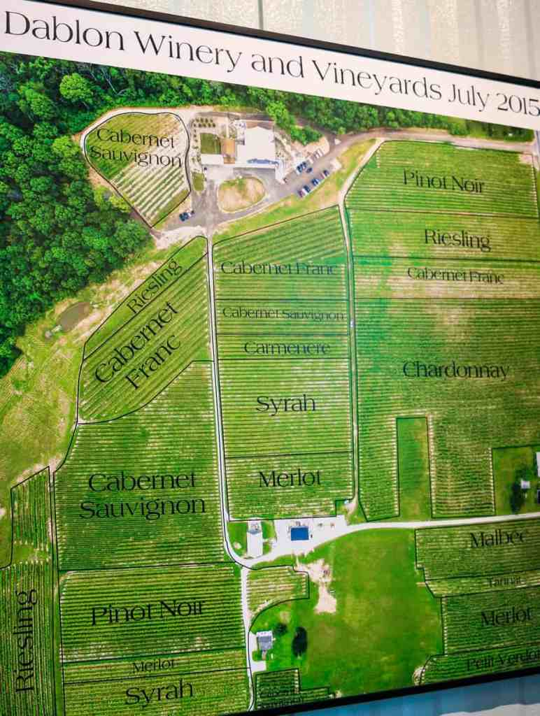 map showing where grapes are planted at Dablon Vineyard
