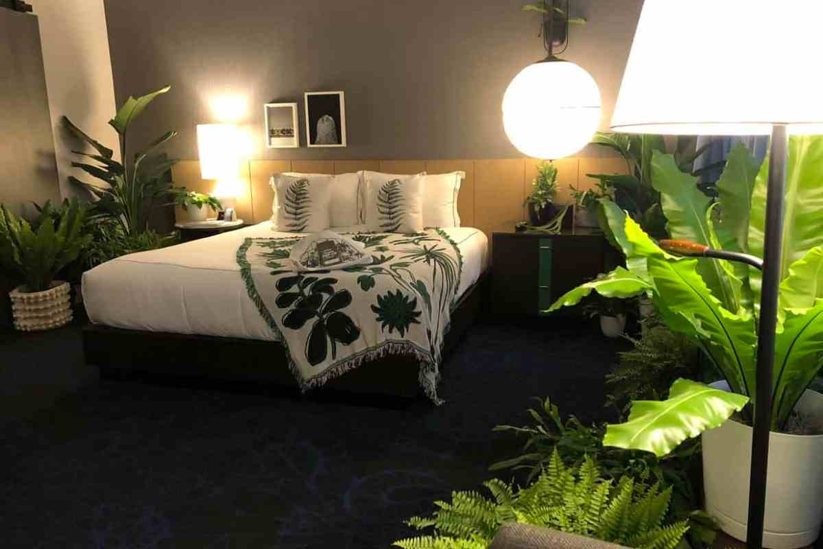 Fern hotel room at plant hotel pop-up in Chicago
