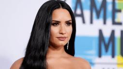 Demi Lovato's Alleged Drug Dealer Has Been Arrested – Details Here!