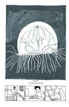 flotationdevice11_Page_18