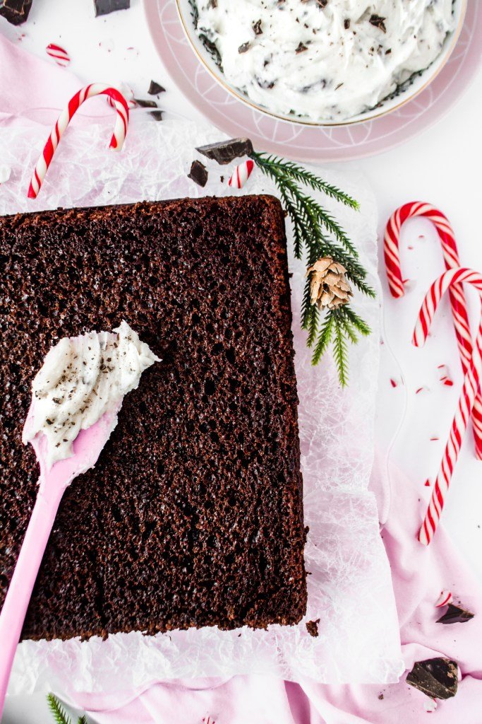 Chocolate Cake with Peppermint Stracciatella Buttercream