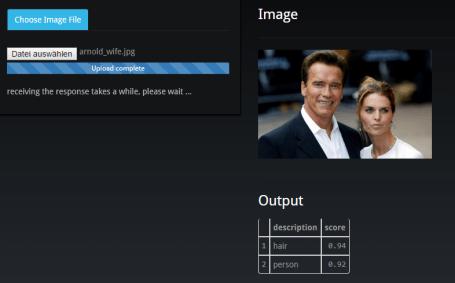 Schwarzenegger tagged