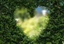 Лиз Бурбо: Човек не може да оздравее, ако не прости на себе си
