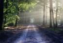 Никой никого не изоставя, просто единият е по-напред – 25 съвета от Михаил Литвак
