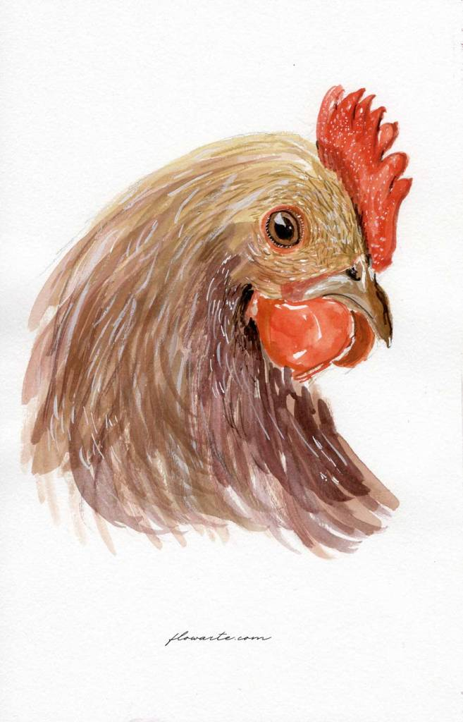 Painting in watercolour of a rooster