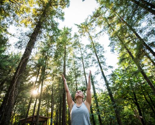 Yoga outdoors in Cornish Woodland