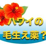 ハワイ 毛生え薬