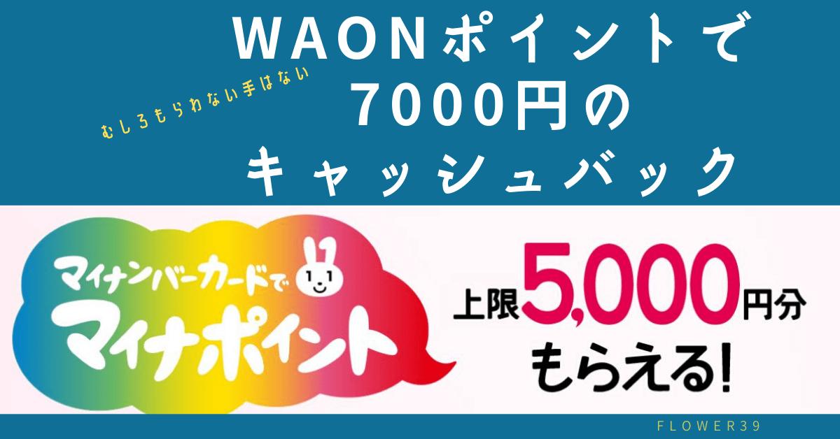 main_won