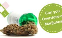 Can you overdose on Marijuana?