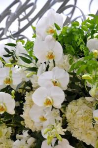 floweruet-stregis-monarch-arch-details