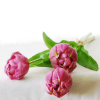 Peony-tulip-bundle-3-lavender-39cm