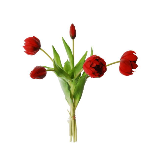Red tulips in a bundle of 3. Real touch.