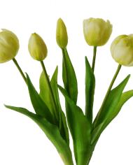 tulips-bundle-cream-37cm-detail