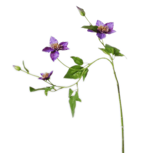 Clematis-spray with 3 flowers | 76 cm | purple