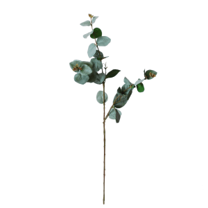flowerdutchess-eucalyptus-66-cm