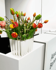 FlowerDutchess-Q1-tulpen-bij-AevesBenefit
