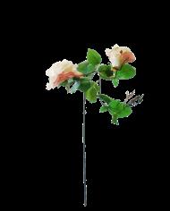 FlowerDutchess-rozen-tak-poederroze-grote-rozen-3