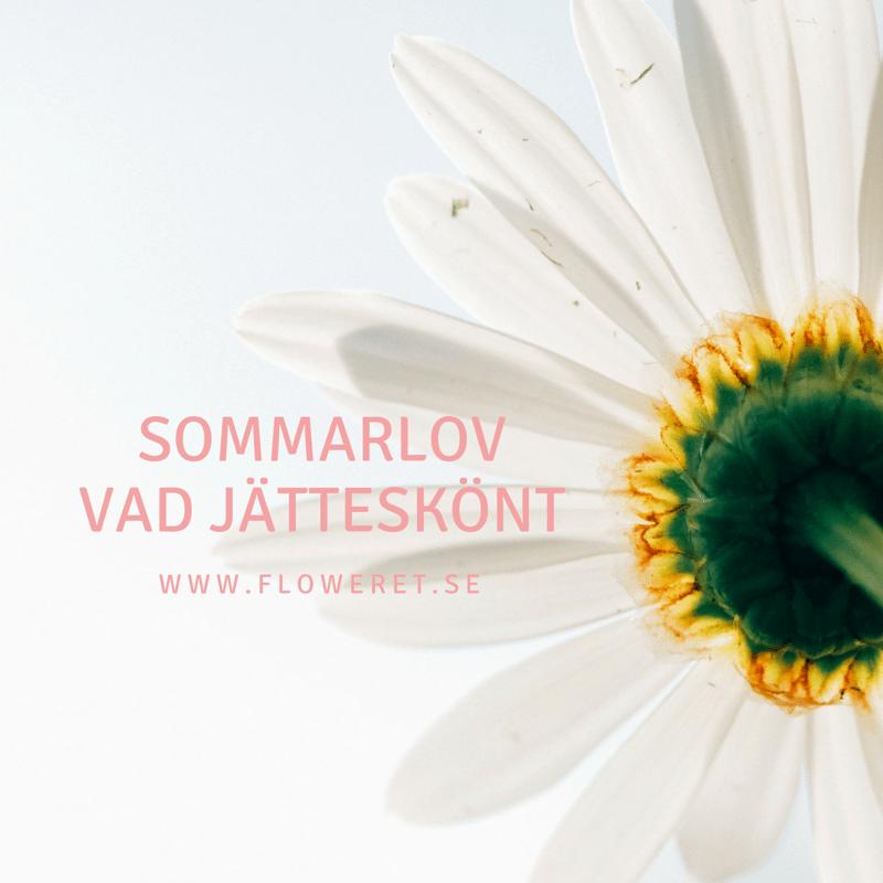 sommarlov www.floweret.se