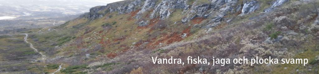 vandra