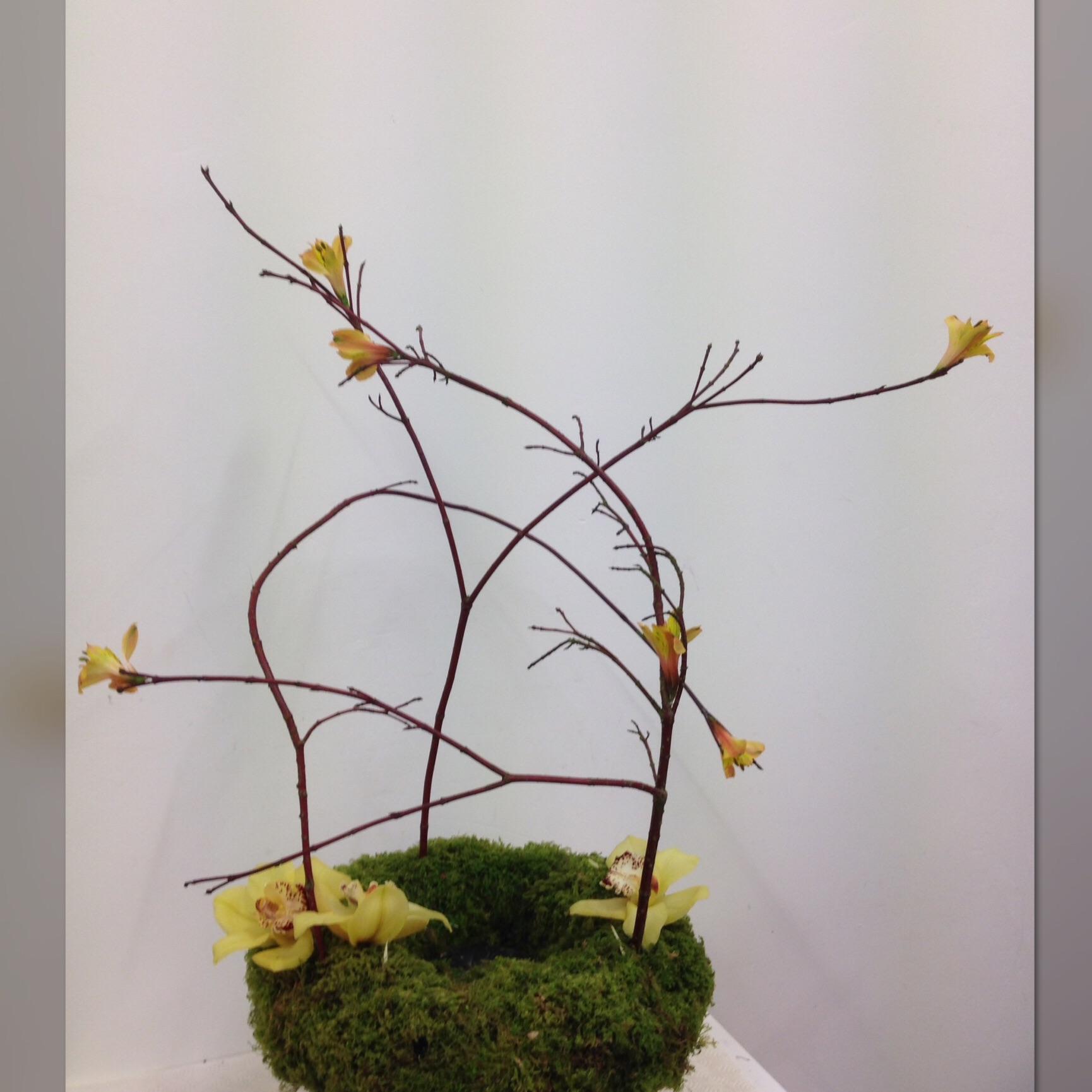 Funeral flowers in barnstaple flowerjoy izmirmasajfo