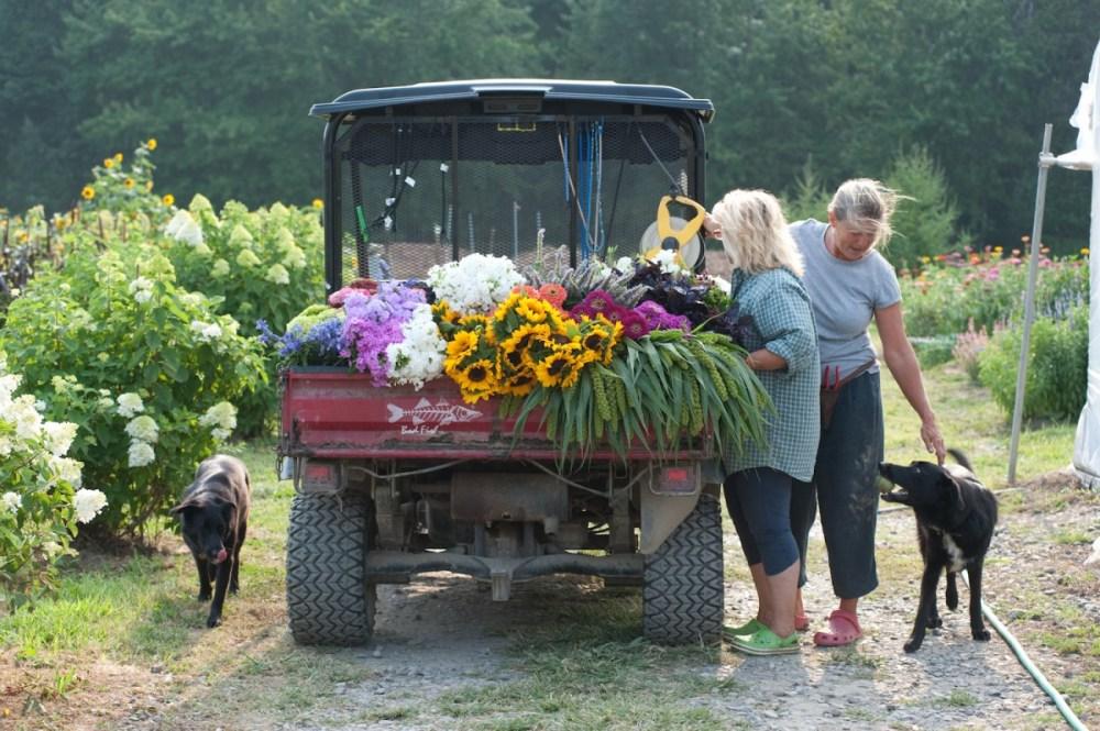 cedar farm wholesale