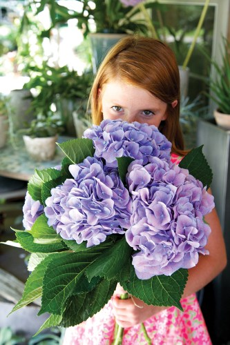 Eliza eyes a cluster of purple hydrangeas destined for a spot on the dessert table.