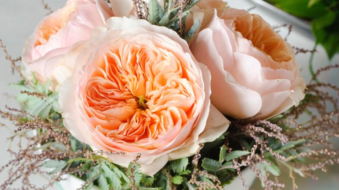 Make Cut Roses Last Flower Magazine
