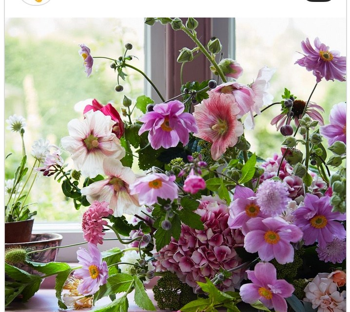 instagram accounts to follow if you love flowers