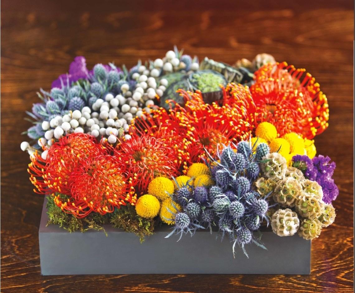 colleen lafleur succulent centerpiece