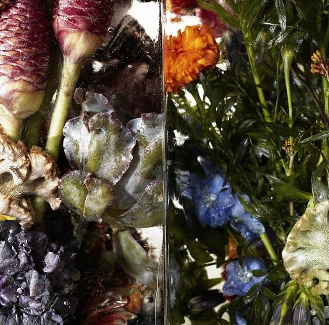azuma makoto master florist