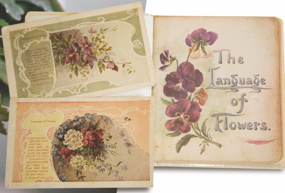 The Symbolic Meanings Of Flowers And Herbs Flower Magazine