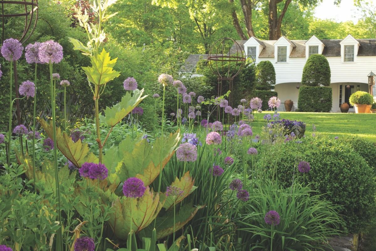 Bunny williams garden and poolhouse flower magazine bunny williams garden alliums izmirmasajfo