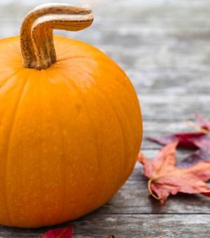 cooking pumpkins, cooking pumpkin varieties