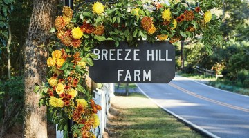 Sign for Breeze Hill Farm decorated with orange and yellow flowers