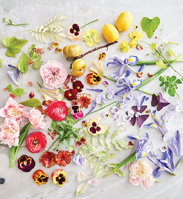Blooms and foliage for Marcy Cook's floral design tutorial laid out on a table