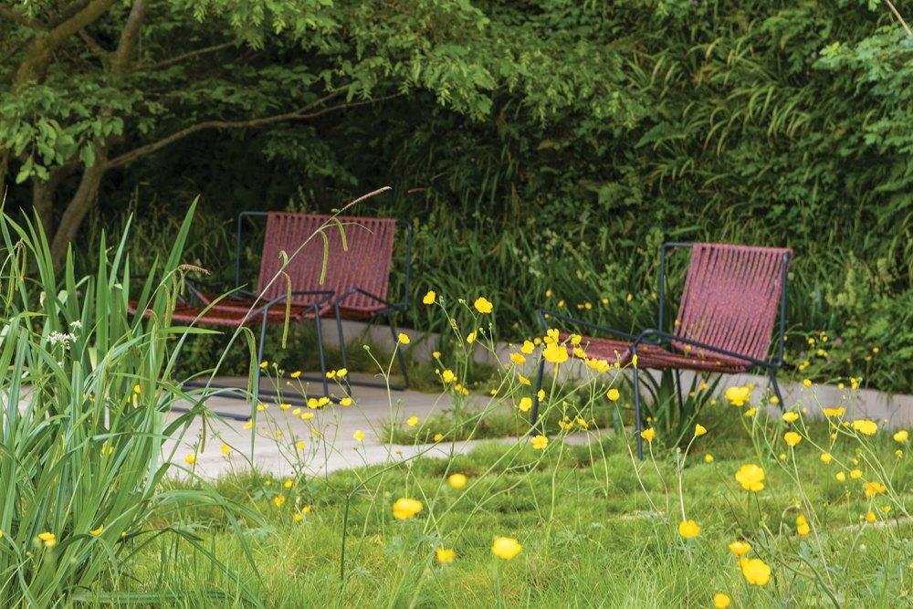 garden chairs, yellow flowers