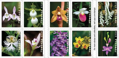 wild orchid stamps