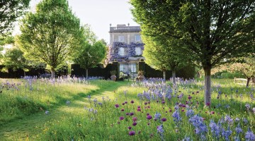 Wild Flower Meadow with spring wild flowers and Highgrove House, May 2009