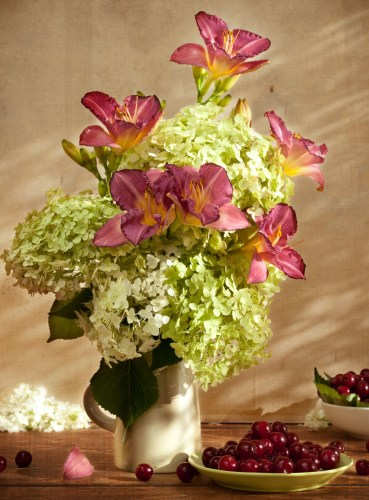 A vase of pink-toned daylilies with white hydrangeas