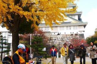 【熱血背包女】2011冬之京阪一個人小旅行DAY4-黑門市場+大阪城